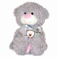 Pink/blue Teddy w/heart
